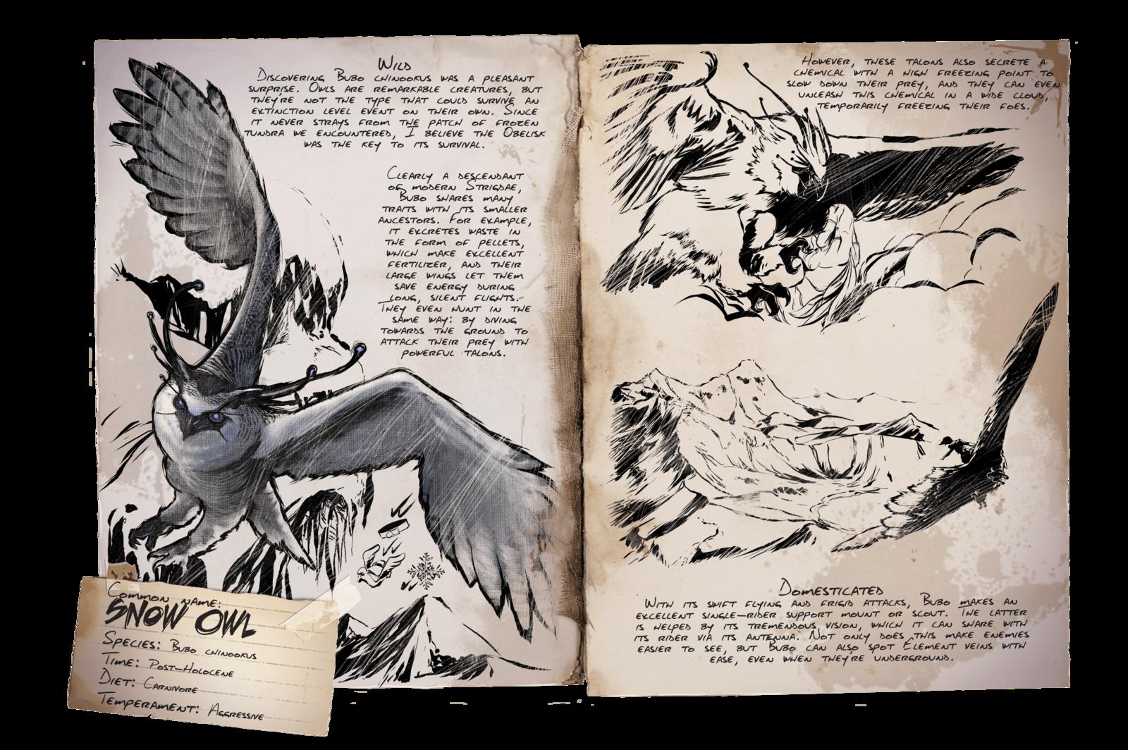 Dino Dossier Fr Harfang Des Neiges Extinction Ark