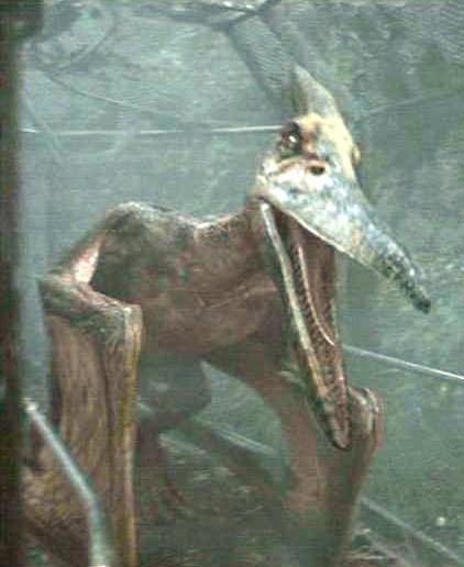 PteranodonJurassic.png.9a6affd7038e65d3625701b28a26c8ea.png